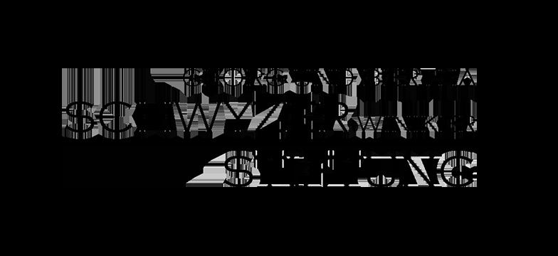 Georg und Bertha Schwyzer-Winiker-Stiftung logo